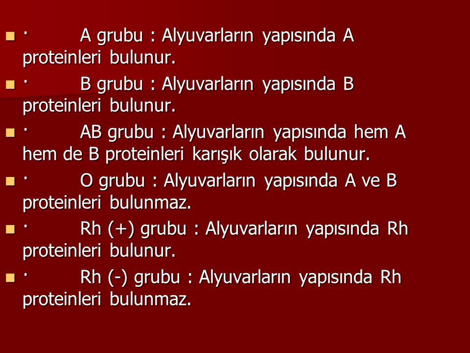 · A grubu : Alyuvarların yapısında A proteinleri bulunur. · A grubu : Alyuvarların yapısında A proteinleri bulunur. · B grubu : Alyuvarların yapısında