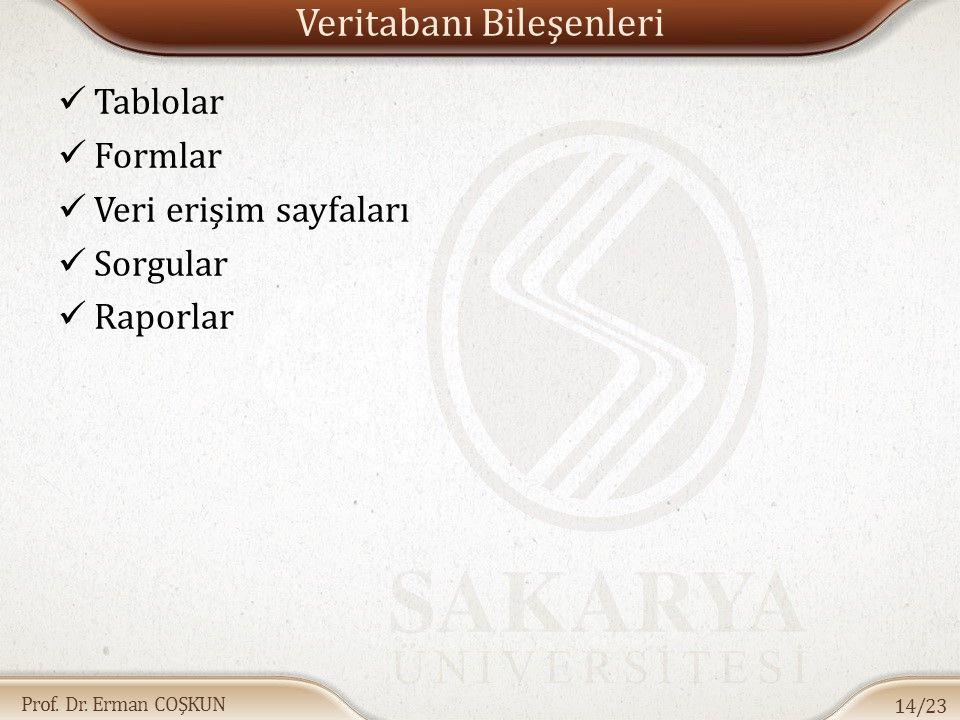 Prof. Dr. Erman COŞKUN Veritabanı Bileşenleri Tablolar Formlar Veri erişim sayfaları Sorgular Raporlar 14/23