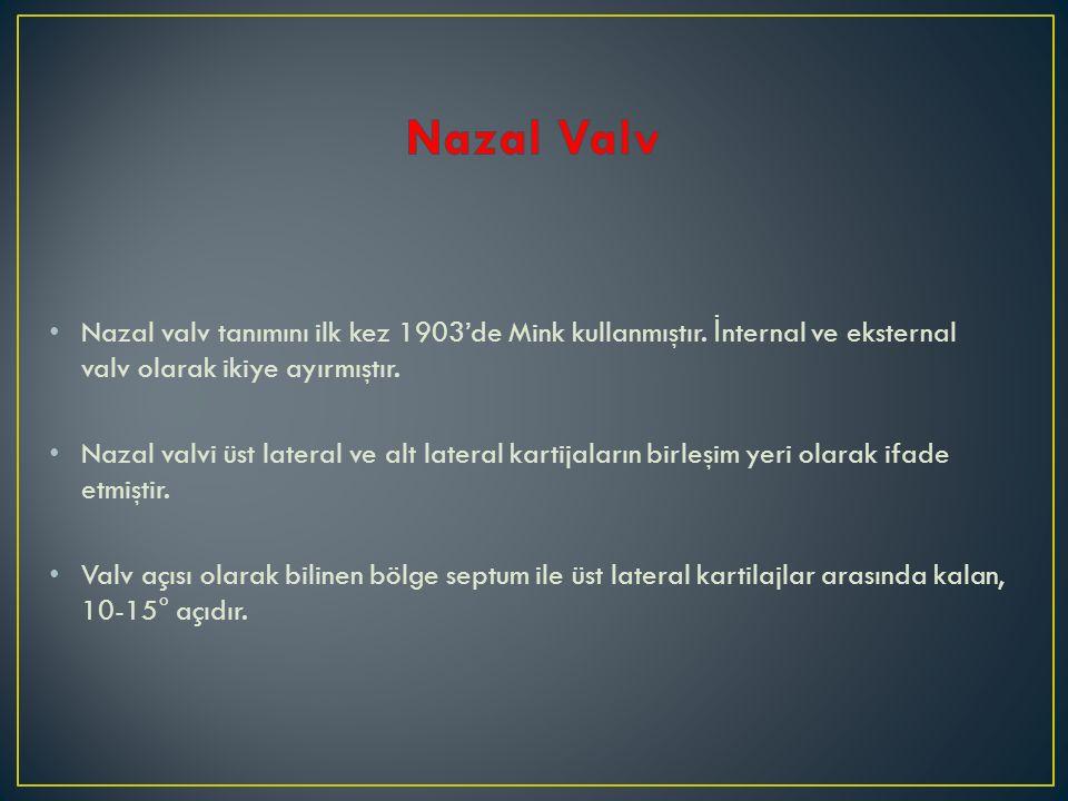 Nazal valv tanımını ilk kez 1903'de Mink kullanmıştır. İ nternal ve eksternal valv olarak ikiye ayırmıştır. Nazal valvi üst lateral ve alt lateral kar
