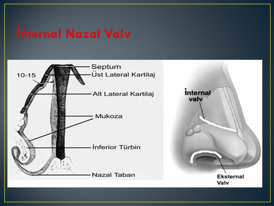 Nazal valv bölgesi de ğ erlendirilirken endoskopik muayene esnasında inspirasyonda meydana gelen kollapsı görebilmek mümkündür.