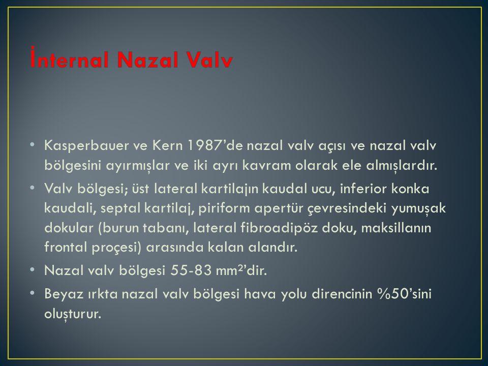 Kasperbauer ve Kern 1987'de nazal valv açısı ve nazal valv bölgesini ayırmışlar ve iki ayrı kavram olarak ele almışlardır. Valv bölgesi; üst lateral k