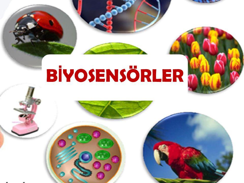 Biyosensörler biyokomponentler(reseptör) ile fiziksel komponentlerden(transduser) oluşurlar.Biyosensörün görevi biyolojik bir olayın elektriksel sinyale dönüştürülmesidir.