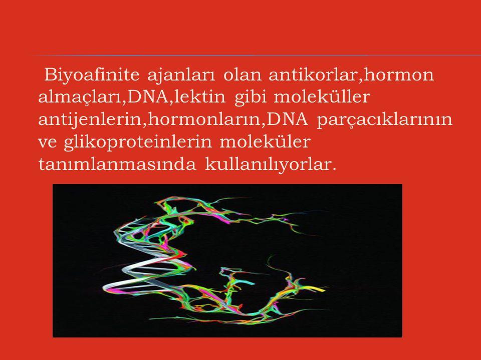 Biyoafinite ajanları olan antikorlar,hormon almaçları,DNA,lektin gibi moleküller antijenlerin,hormonların,DNA parçacıklarının ve glikoproteinlerin mol