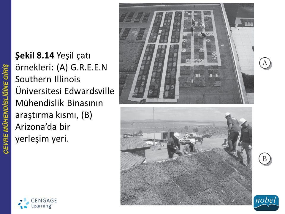 Şekil 8.14 Yeşil çatı örnekleri: (A) G.R.E.E.N Southern Illinois Üniversitesi Edwardsville Mühendislik Binasının araştırma kısmı, (B) Arizona'da bir y