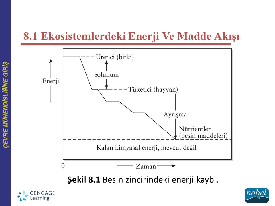 Şekil 8.2 Fosfor, azot, karbon ve kükürt için aerobik çevrim.