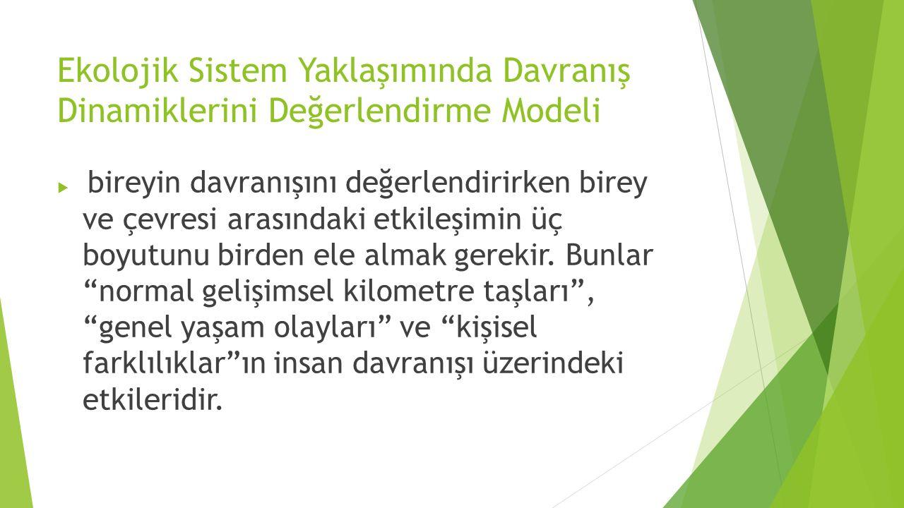 Ekolojik Sistem Yaklaşımında Davranış Dinamiklerini Değerlendirme Modeli  bireyin davranışını değerlendirirken birey ve çevresi arasındaki etkileşimi