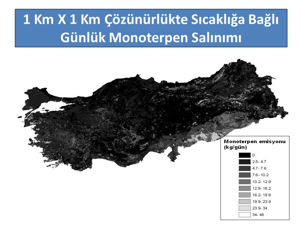 1 Km X 1 Km Çözünürlükte Sıcaklığa Bağlı Günlük Monoterpen Salınımı