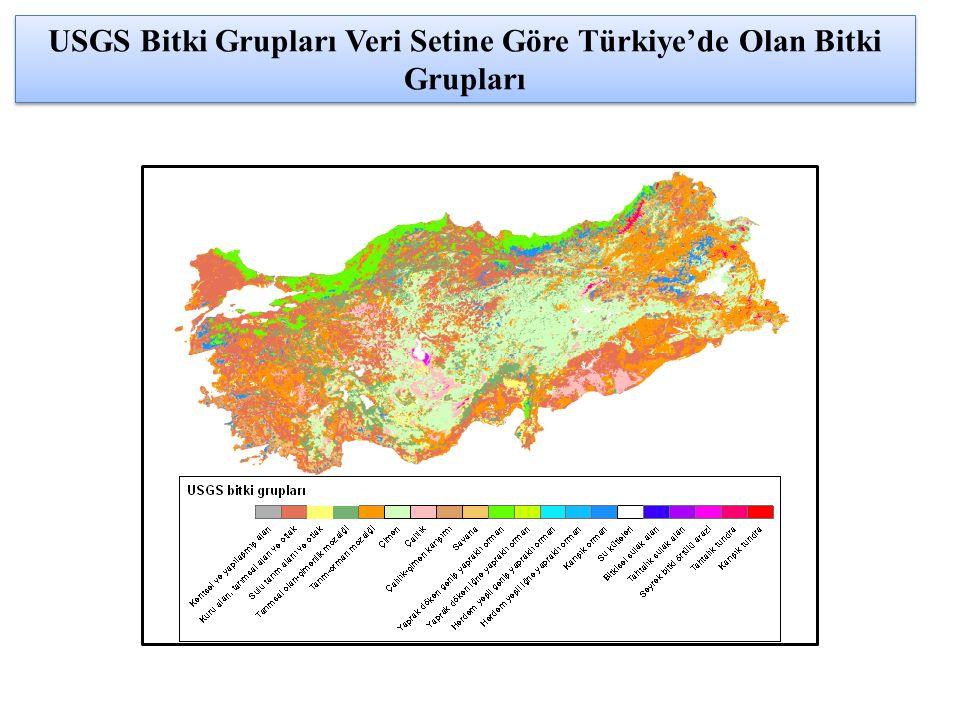 USGS Bitki Grupları Veri Setine Göre Türkiye'de Olan Bitki Grupları