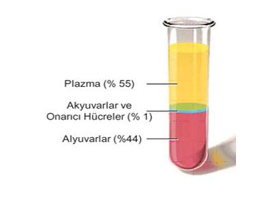 Kan örneklerine sitrat veya heparin gibi antikoagulanlar eklendiğinde plazmadaki pıhtılaşma faktörleri inaktive olur ve koagulasyon faktörleri içermeyen plazma; SERUM olarak adlandırılır.