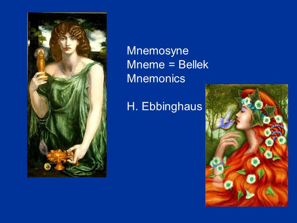 Mnemosyne Mneme = Bellek Mnemonics H. Ebbinghaus