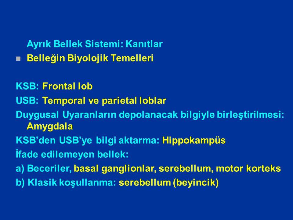 Ayrık Bellek Sistemi: Kanıtlar n Belleğin Biyolojik Temelleri KSB: Frontal lob USB: Temporal ve parietal loblar Duygusal Uyaranların depolanacak bilgi