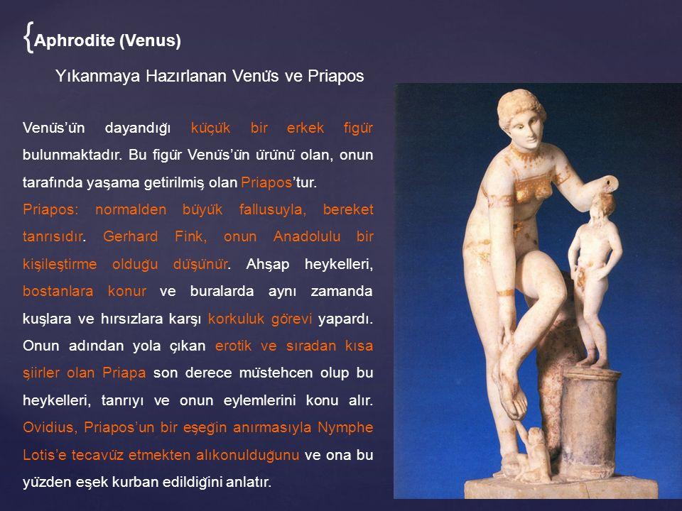 Yıkanmaya Hazırlanan Venu ̈ s ve Priapos Venu ̈ s'u ̈ n dayandıg ̆ ı ku ̈ c ̧ u ̈ k bir erkek figu ̈ r bulunmaktadır.