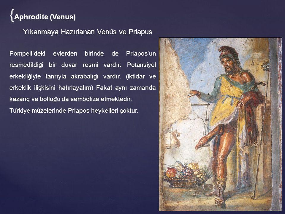 Yıkanmaya Hazırlanan Venu ̈ s ve Priapus Pompeii'deki evlerden birinde de Priapos'un resmedildig ̆ i bir duvar resmi vardır. Potansiyel erkeklig ̆ iyl