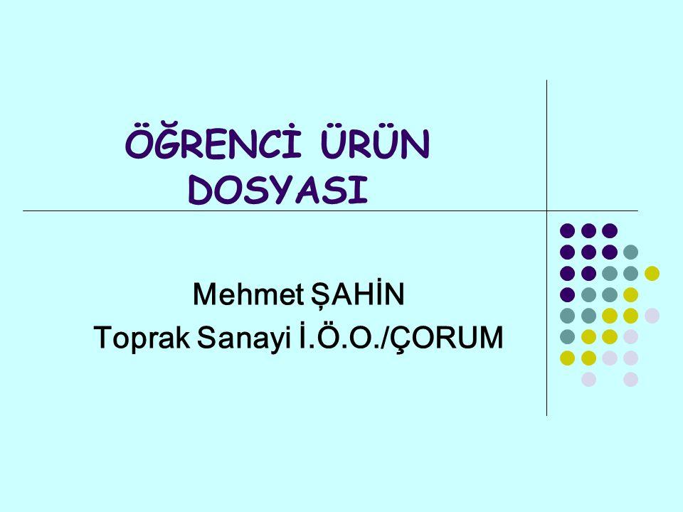 ÖĞRENCİ ÜRÜN DOSYASI Mehmet ŞAHİN Toprak Sanayi İ.Ö.O./ÇORUM