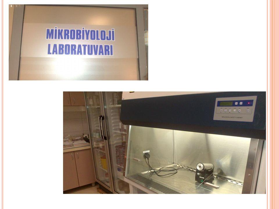 Bu gruptaki laboratuarlar Halk Sağlığı Laboratuarları, Klinik Mikrobiyoloji Laboratuarları ve Araştırma Laboratuarlarıdır.