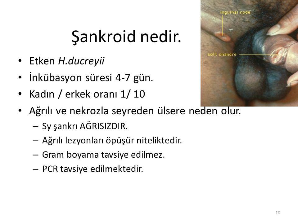 Şankroid nedir. Etken H.ducreyii İnkübasyon süresi 4-7 gün.