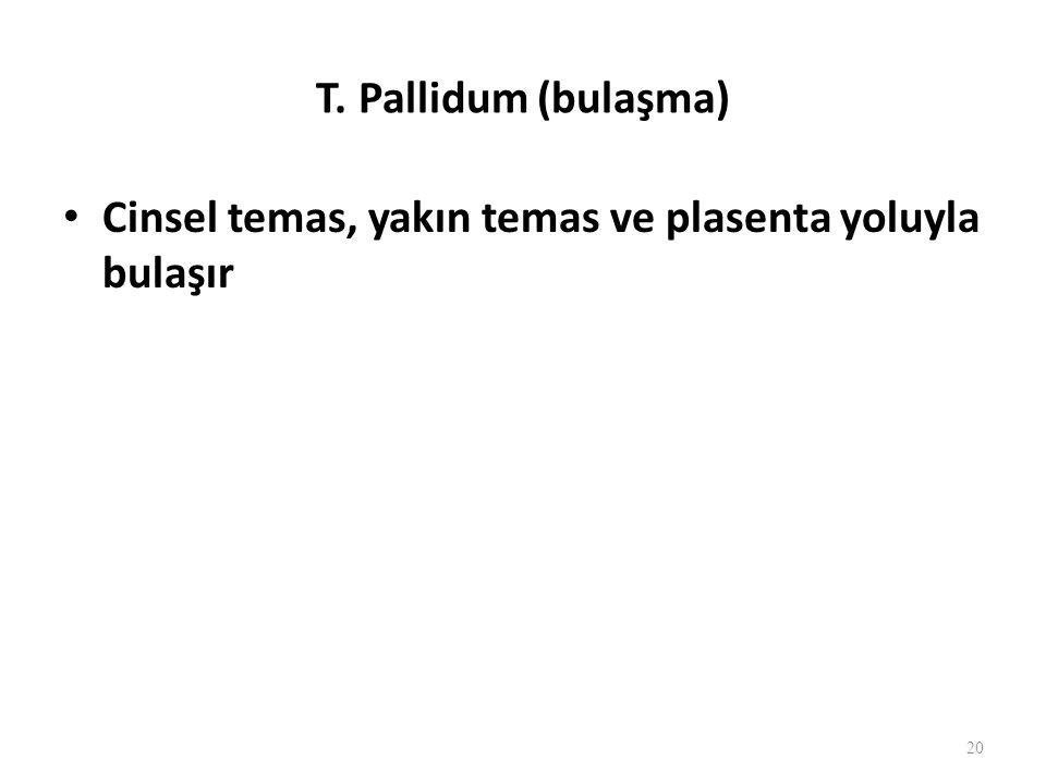 T. Pallidum (bulaşma) Cinsel temas, yakın temas ve plasenta yoluyla bulaşır 20