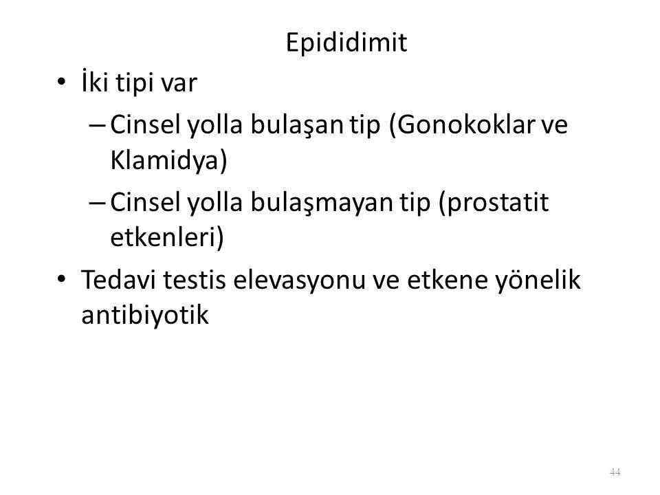 Epididimit İki tipi var – Cinsel yolla bulaşan tip (Gonokoklar ve Klamidya) – Cinsel yolla bulaşmayan tip (prostatit etkenleri) Tedavi testis elevasyonu ve etkene yönelik antibiyotik 44