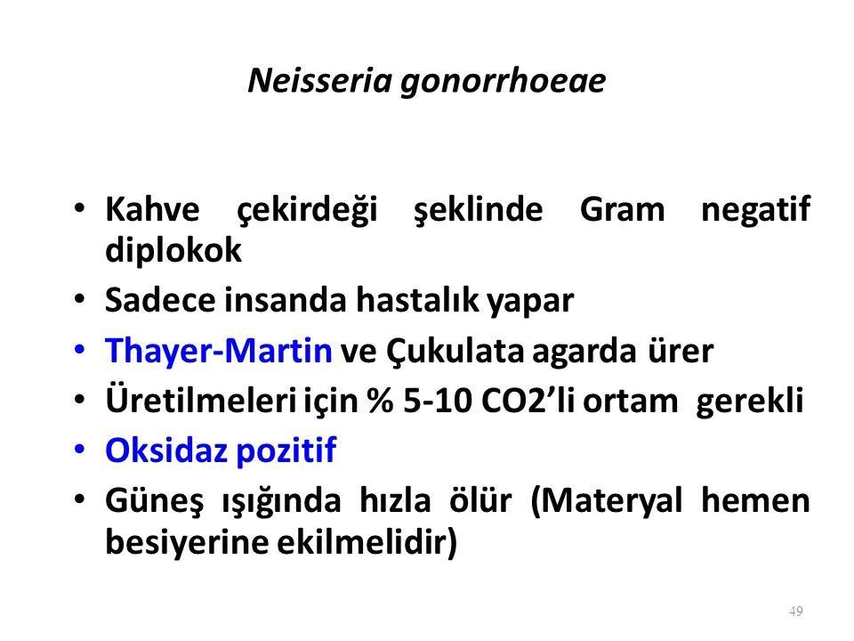 Neisseria gonorrhoeae Kahve çekirdeği şeklinde Gram negatif diplokok Sadece insanda hastalık yapar Thayer-Martin ve Çukulata agarda ürer Üretilmeleri için % 5-10 CO2'li ortam gerekli Oksidaz pozitif Güneş ışığında hızla ölür (Materyal hemen besiyerine ekilmelidir) 49