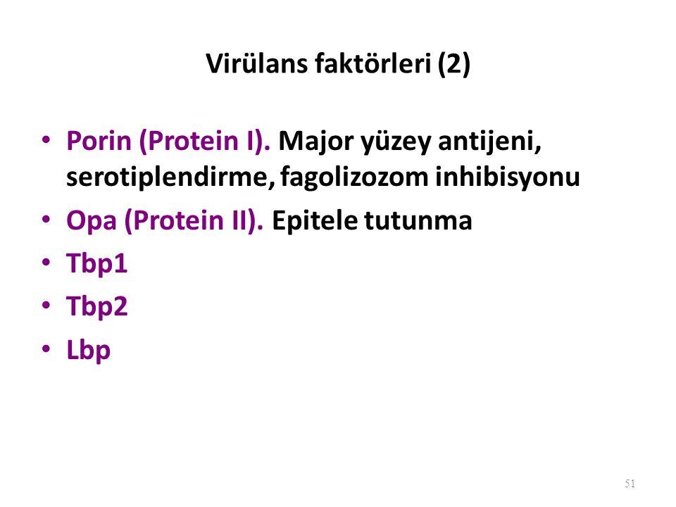 Patogenez Pilus ile mukoza hücresine tutunup hücre içinde çoğalır.