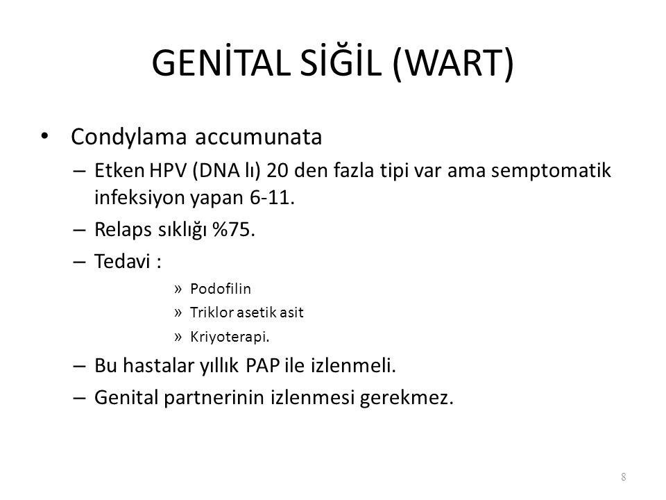GENİTAL SİĞİL (WART) Condylama accumunata – Etken HPV (DNA lı) 20 den fazla tipi var ama semptomatik infeksiyon yapan 6-11.