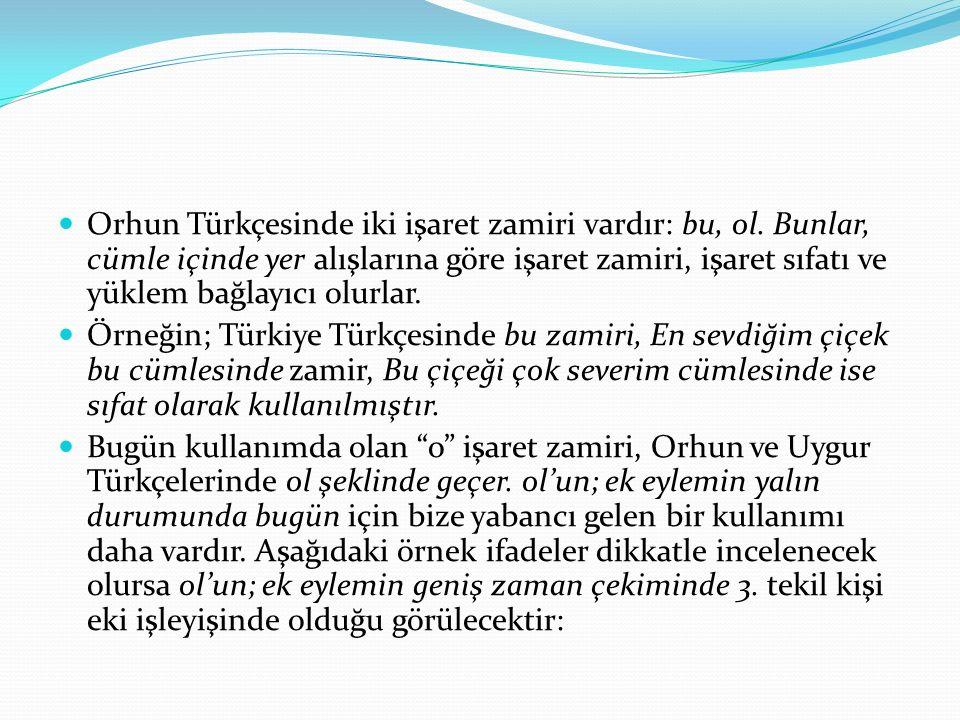 Orhun Türkçesinde iki işaret zamiri vardır: bu, ol. Bunlar, cümle içinde yer alışlarına göre işaret zamiri, işaret sıfatı ve yüklem bağlayıcı olurlar.