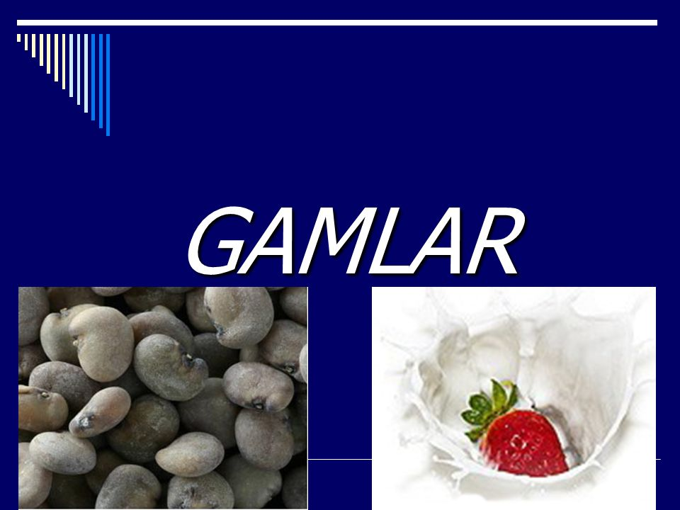 GAMLAR Gıda endüstrisinde gamlar; jelle ş tirici, kıvam attırıcı, stabilize edici ve süspansiyon olu ş turucu ajanlar olarak geni ş bir ş ekilde kullanılmaktadırlar.