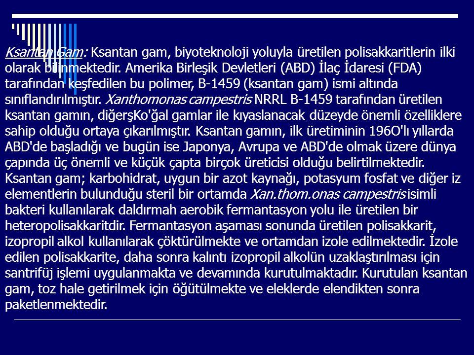 Ksantan Gam: Ksantan gam, biyoteknoloji yoluyla üretilen polisakkaritlerin ilki olarak bilinmektedir. Amerika Birleşik Devletleri (ABD) İlaç İdaresi (