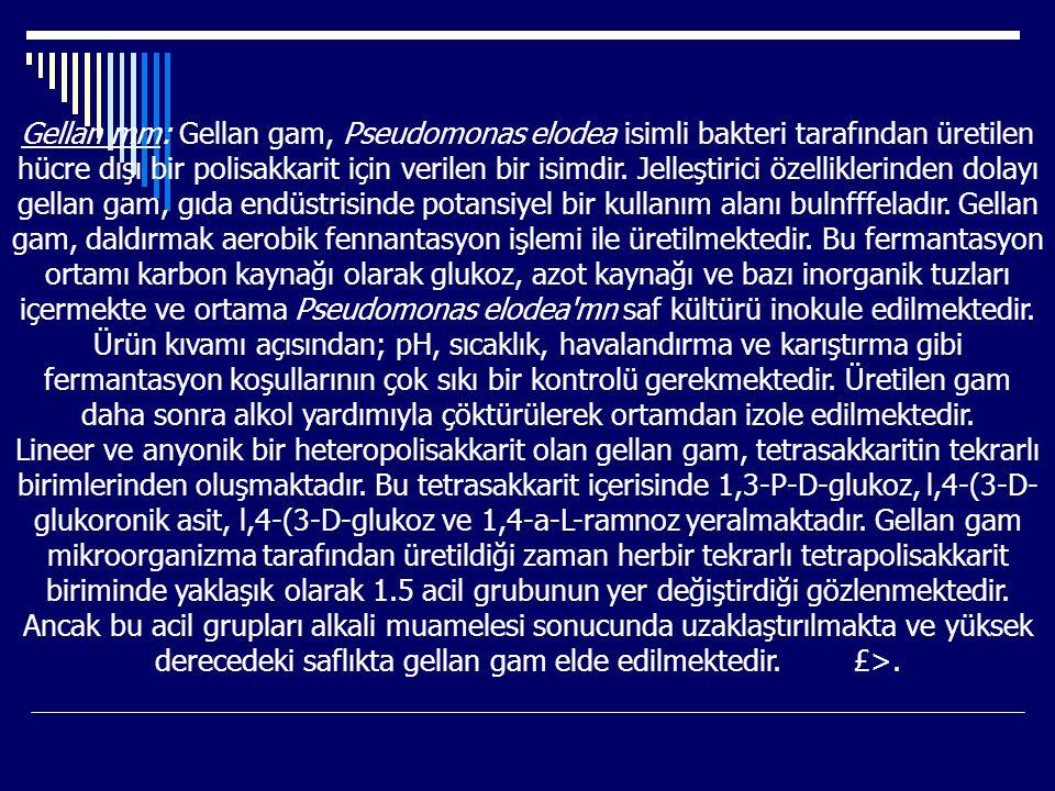 Gellan mm: Gellan gam, Pseudomonas elodea isimli bakteri tarafından üretilen hücre dışı bir polisakkarit için verilen bir isimdir. Jelleştirici özelli