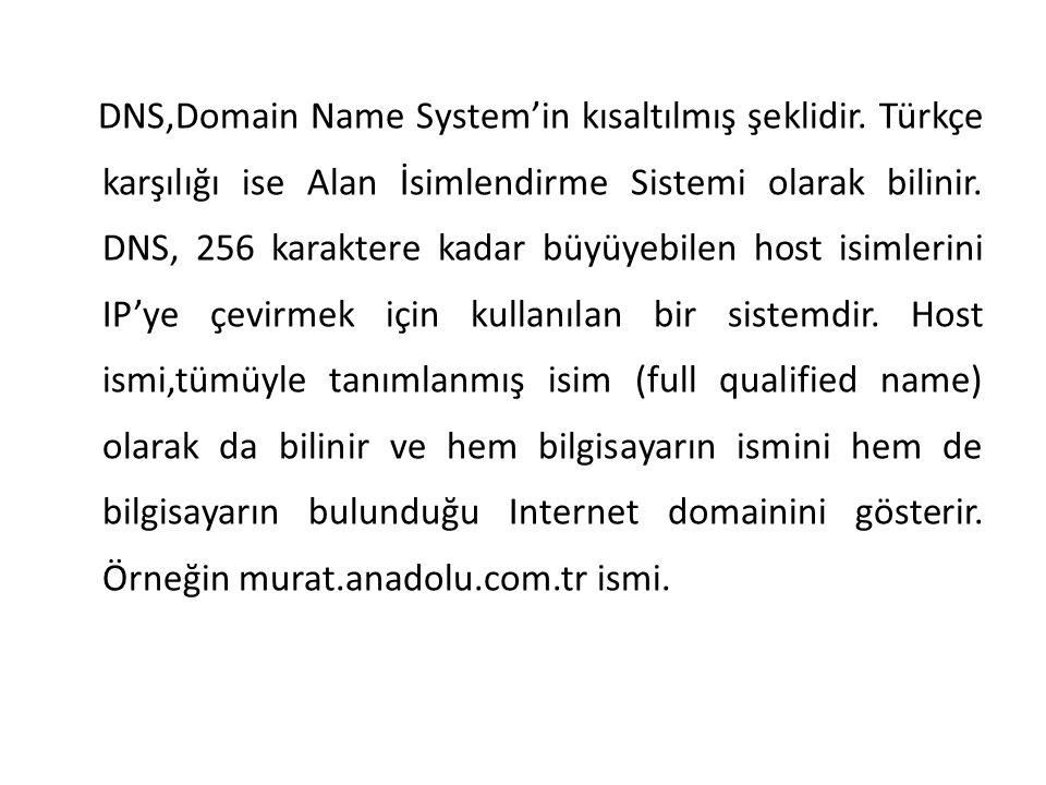 DNS,Domain Name System'in kısaltılmış şeklidir. Türkçe karşılığı ise Alan İsimlendirme Sistemi olarak bilinir. DNS, 256 karaktere kadar büyüyebilen ho