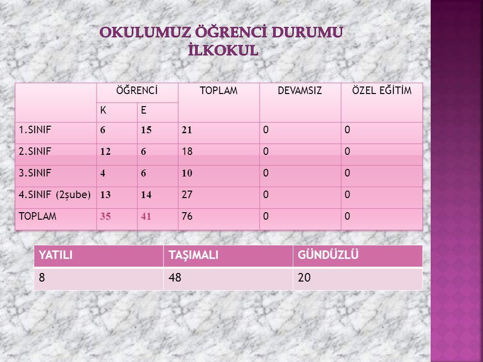 YATILITAŞIMALIGÜNDÜZLÜ 84820