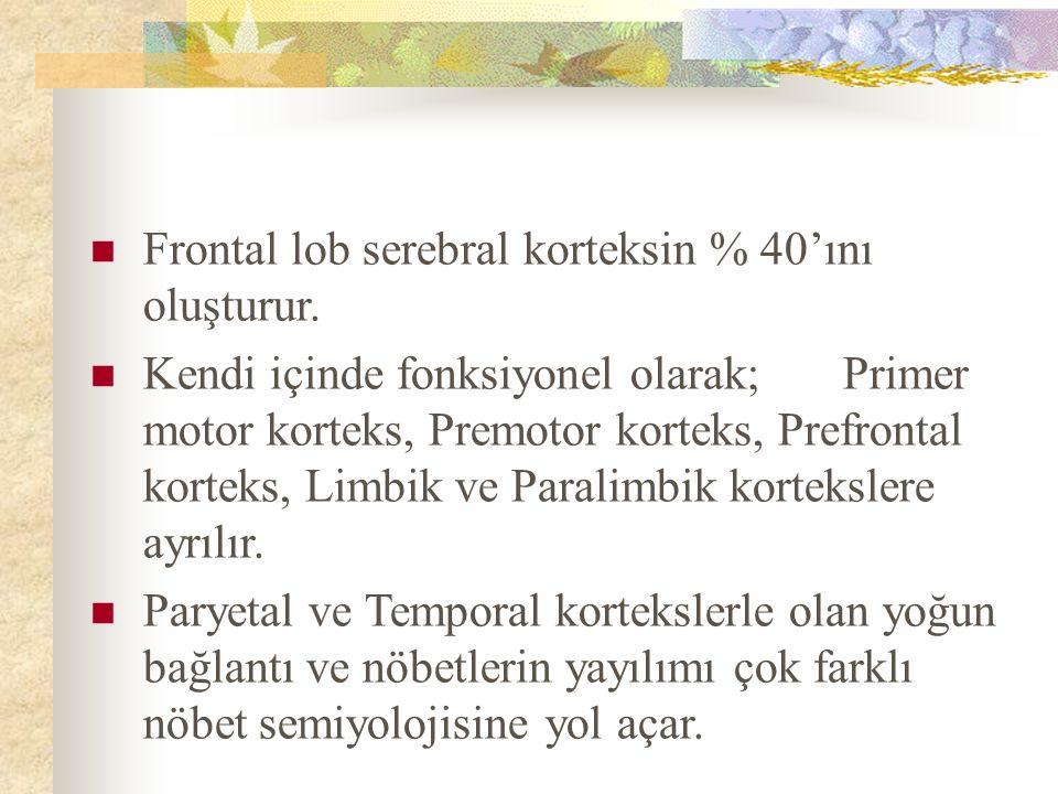 Frontal lob serebral korteksin % 40'ını oluşturur.