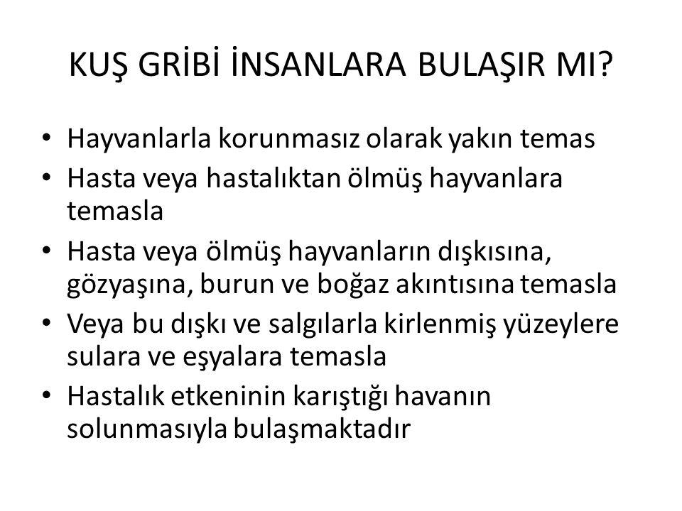 KUŞ GRİBİ İNSANLARA BULAŞIR MI.