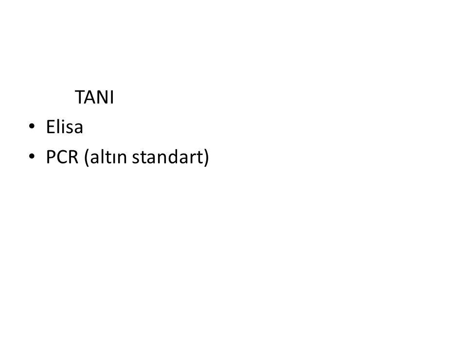 TANI Elisa PCR (altın standart)