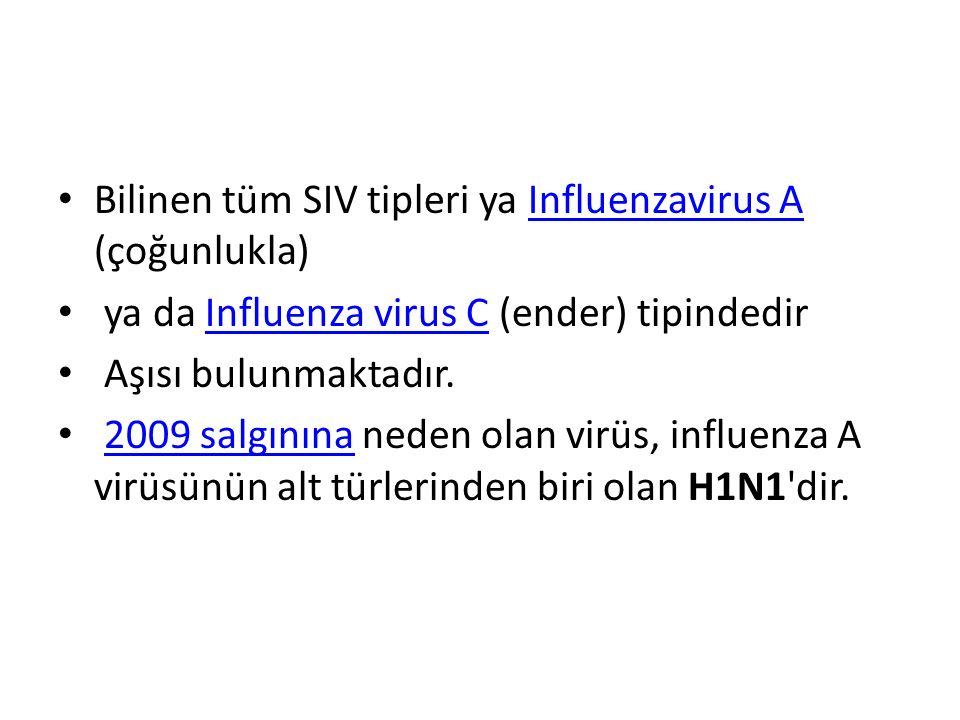 Bilinen tüm SIV tipleri ya Influenzavirus A (çoğunlukla)Influenzavirus A ya da Influenza virus C (ender) tipindedirInfluenza virus C Aşısı bulunmaktadır.