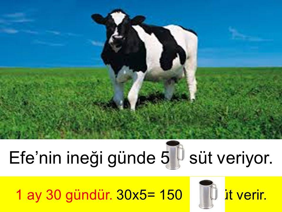 1 ay 30 gündür. 30x5= 150 süt verir.