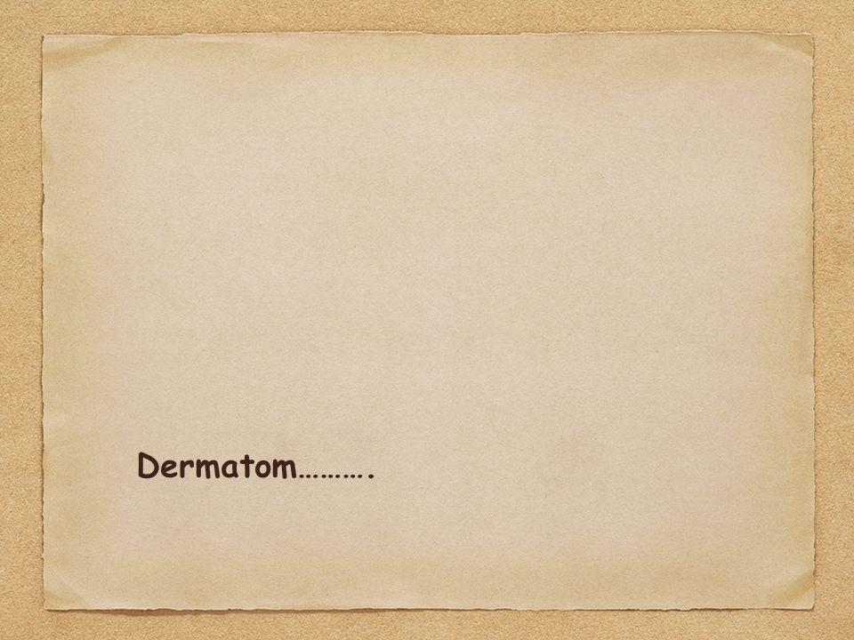 Dermatom……….