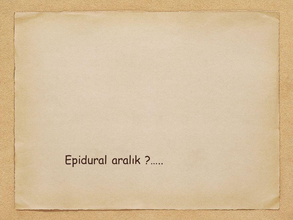Epidural aralık ?…..