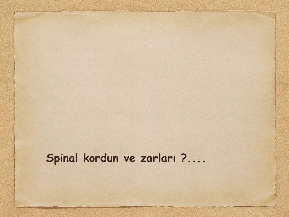 Spinal kordun ve zarları ?....