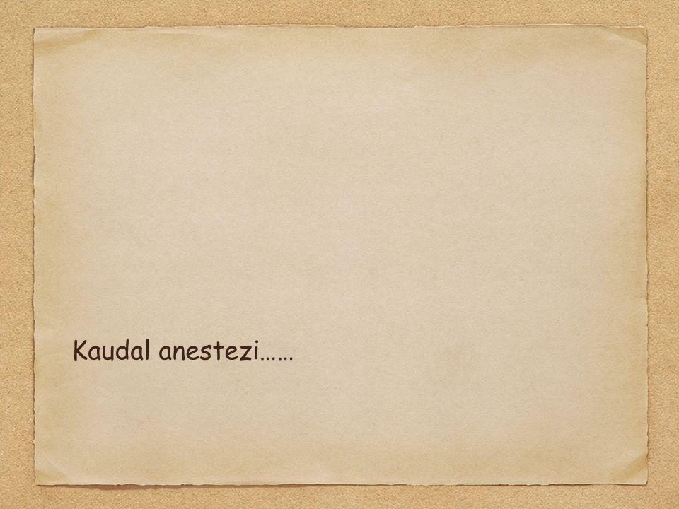 Kaudal anestezi……