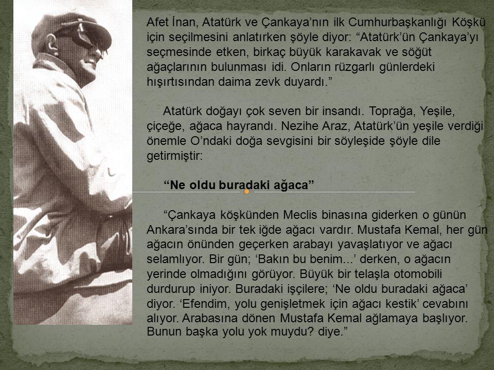 Ankara'yı Türkiye Cumhuriyetinin başkenti yapan ve bir bozkır kasabasında modern bir şehir kuran Atatürk, bu yönüyle de, günümüzdeki, şehircilik, çevr