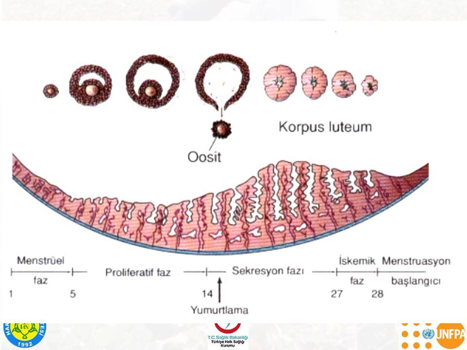  Sifiliz: Erken dönemde  Sağırlık,  Anormal diş ve kemikler,  Hidrosefali,  Zeka geriliği.