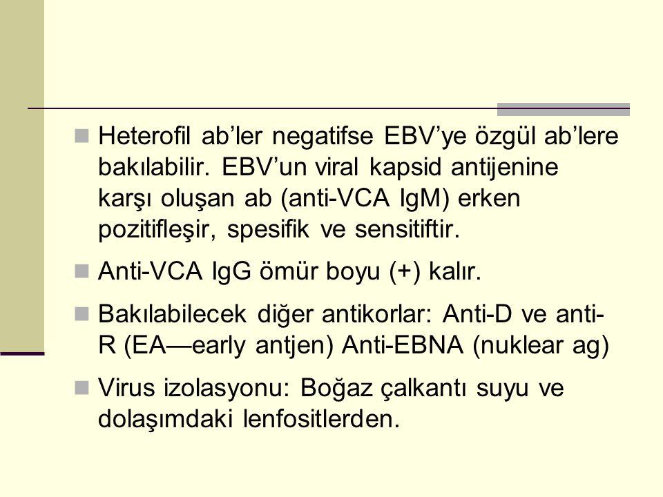 Heterofil ab'ler negatifse EBV'ye özgül ab'lere bakılabilir. EBV'un viral kapsid antijenine karşı oluşan ab (anti-VCA IgM) erken pozitifleşir, spesifi