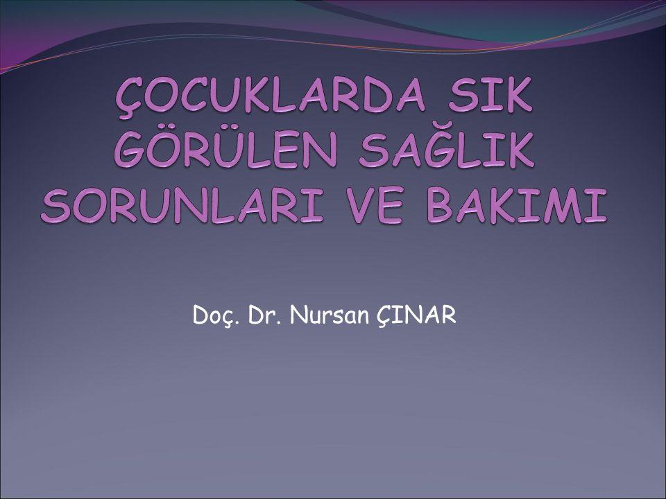 Doç. Dr. Nursan ÇINAR
