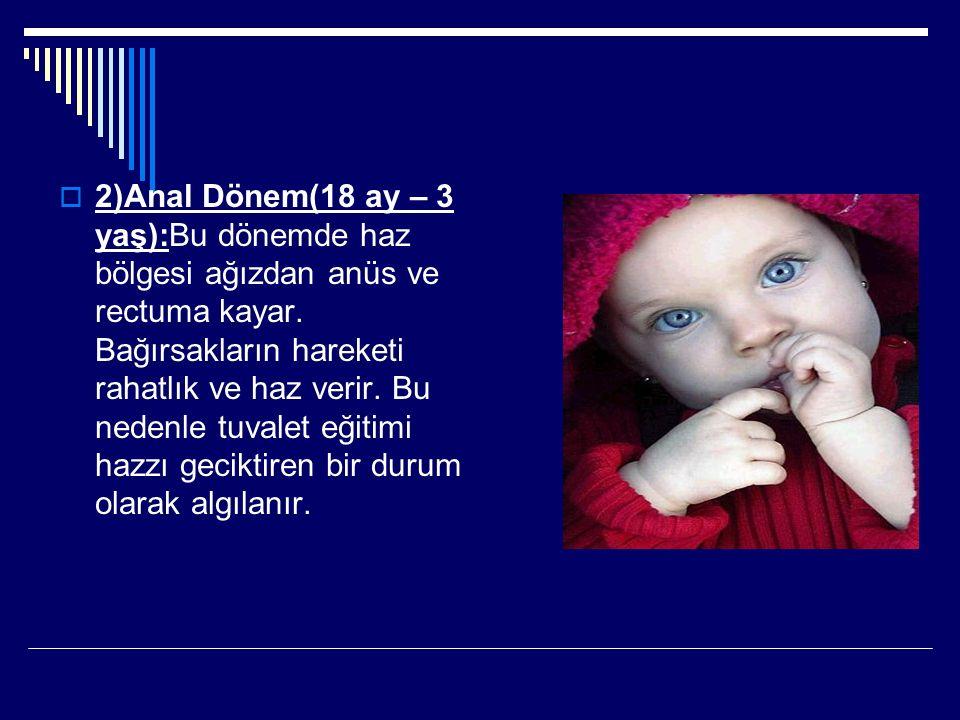  2)Anal Dönem(18 ay – 3 yaş):Bu dönemde haz bölgesi ağızdan anüs ve rectuma kayar. Bağırsakların hareketi rahatlık ve haz verir. Bu nedenle tuvalet e