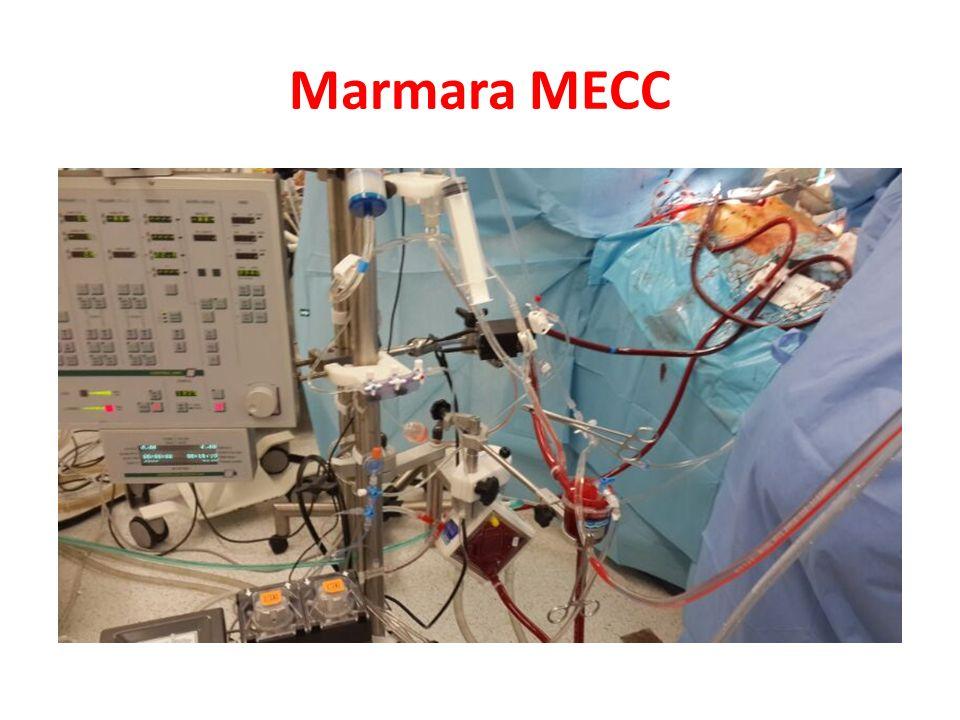 Marmara MECC