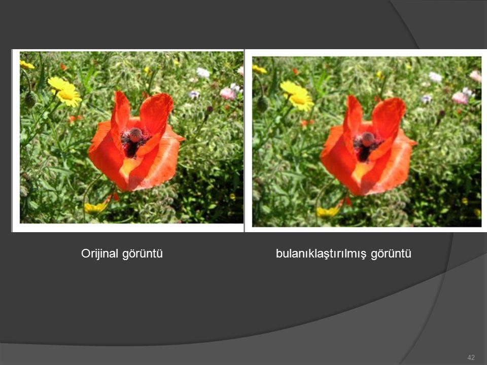 Orijinal görüntübulanıklaştırılmış görüntü 42