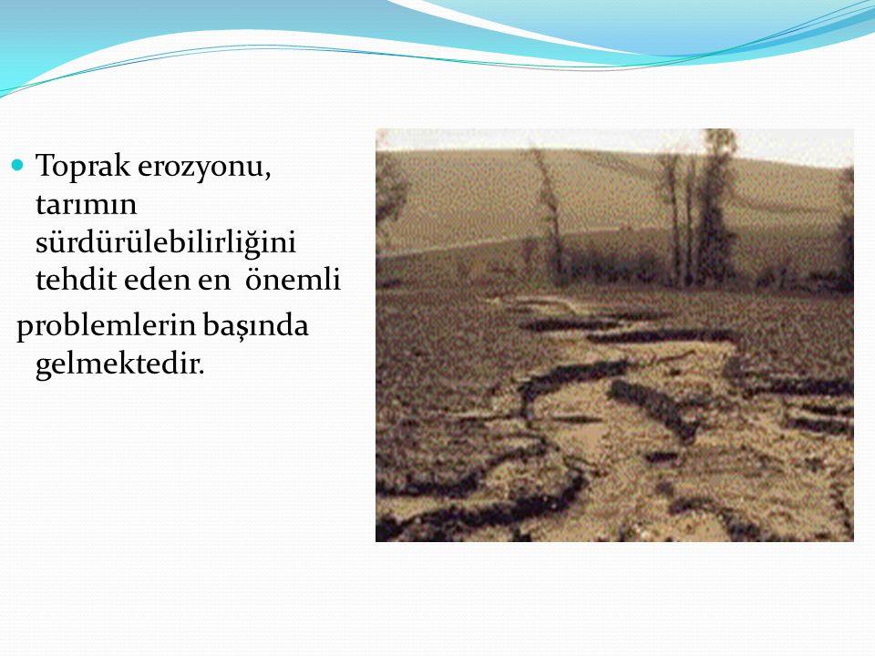 Toprak erozyonu, tarımın sürdürülebilirliğini tehdit eden en önemli problemlerin başında gelmektedir.