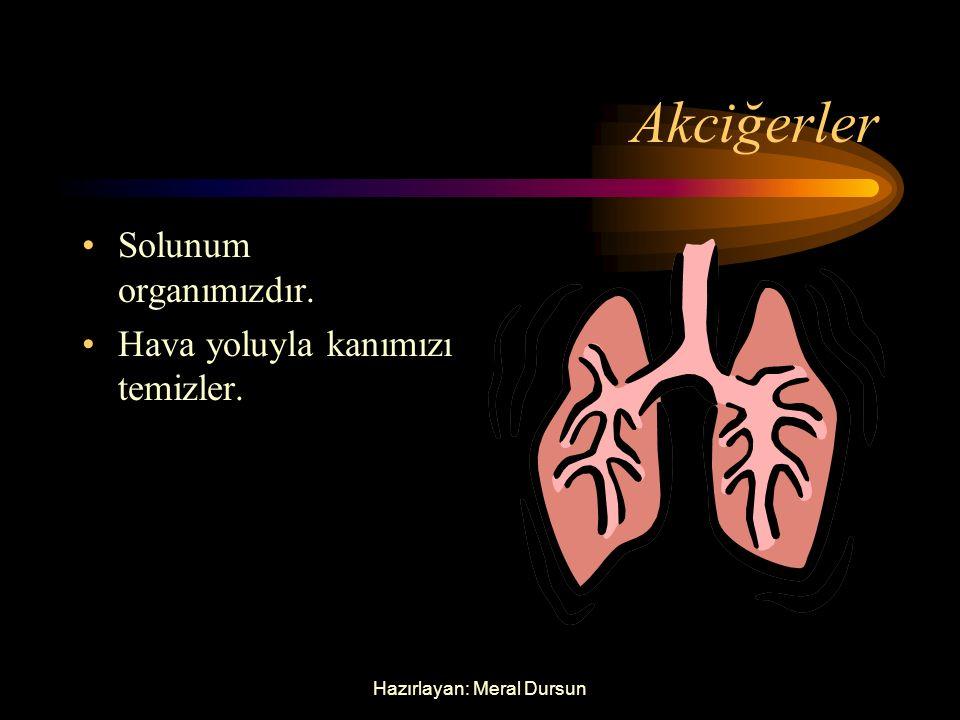 Hazırlayan: Meral Dursun Kalp Dolaşım organımızdır. Kan dolaşımını sağlar.