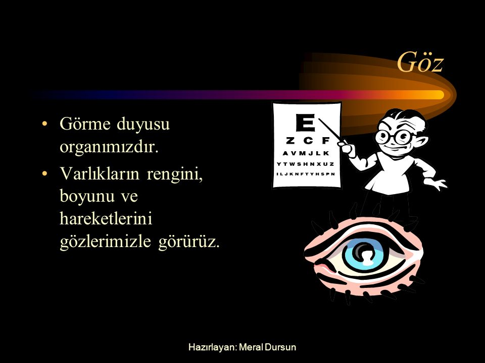 Hazırlayan: Meral Dursun Göz Görme duyusu organımızdır.